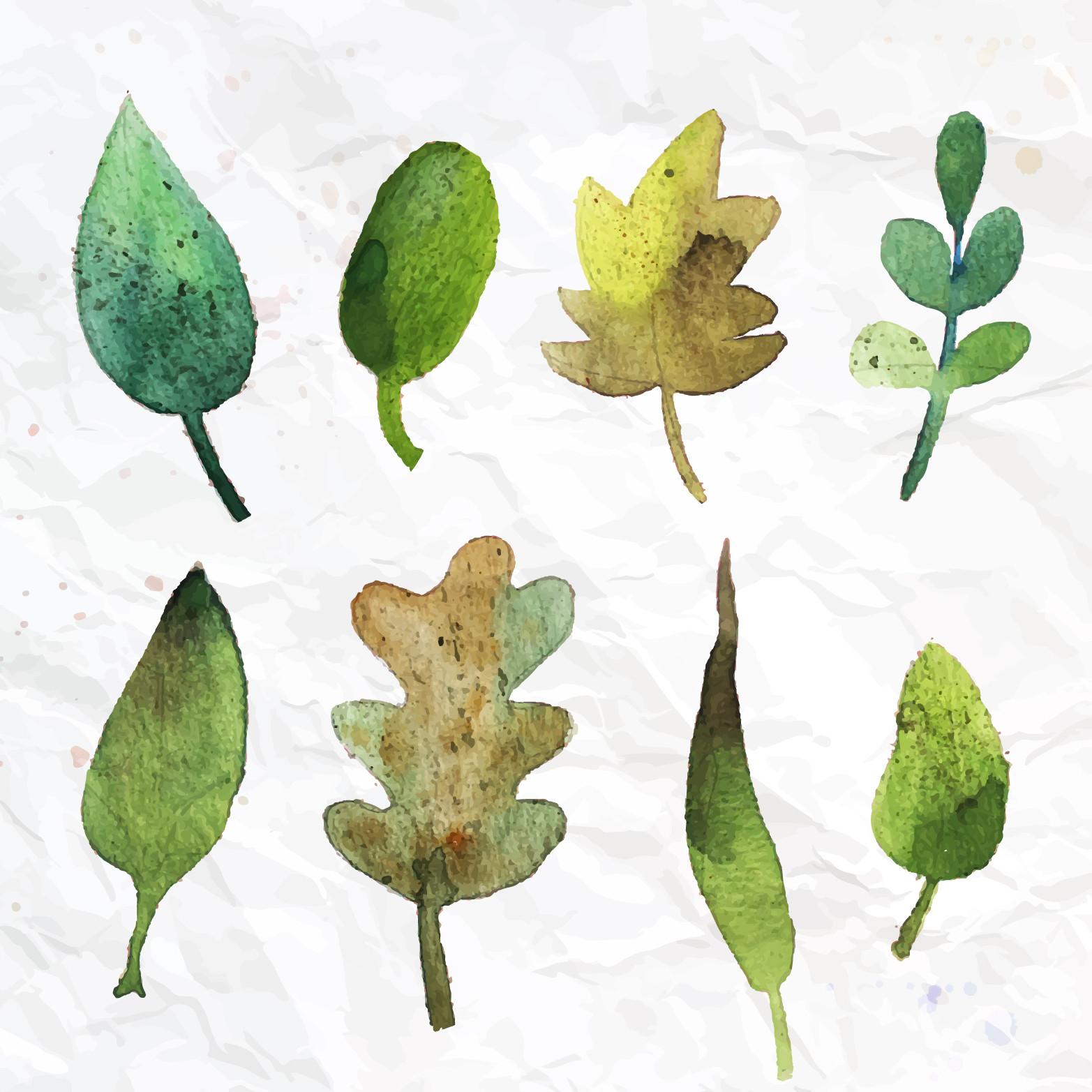 背景 壁纸 绿色 绿叶 设计 矢量 矢量图 树叶 素材 植物 桌面 1565