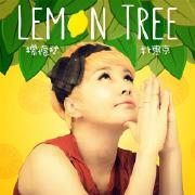 Lemon tree-朴慧京-专辑《Lemon tree》