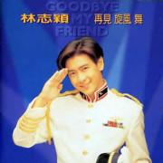 Goodbye My Friend (组曲)-夢想家林志穎