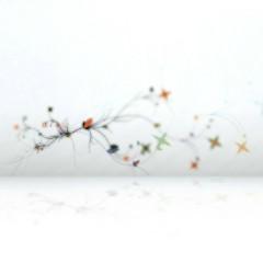 木兰词双翘滑板组装图片