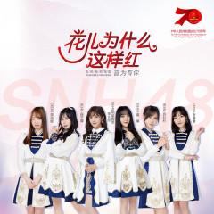 花儿为什么这样红-SNH48