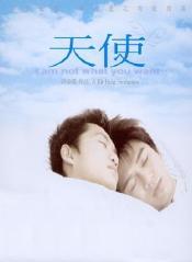 天使(2003)