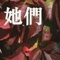 她们-崔恕-专辑《长生不老(预告版)》