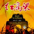 九儿(红高粱)-韩红