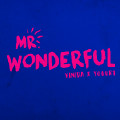 Mr.Wonderful-Vinida万妮达-1