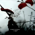 Hunters Of The Last Summer Breeze-Stendeck