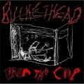 Lunartics-Buckethead