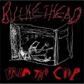 Hog Bitch Stomp-Buckethead