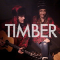 Timber (feat. Alex G) [Acoustic Version]