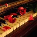 卡西莫多的礼物 钢琴