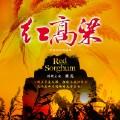 九儿(韩红版)(红高粱片尾曲)