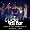 What Makes You Beautiful-Before You Exit