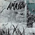 Kelly-Amason