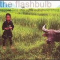 Delhi Ill-光良;The Flashbulb