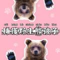 捕获野生熊孩子