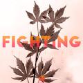Fighting(Original Mix)