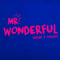 Mr. Wonderful-Vinida万妮达