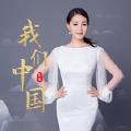 我们中国 (Live版)