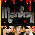 Monkey-ONER