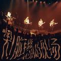 Ska Jam After Strong W (Live)